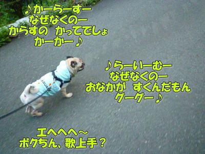 image5_20110823015901.jpg