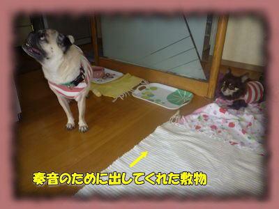image6_20110831021413.jpg