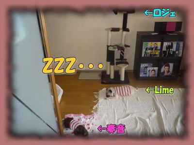 image7_20110831021705.jpg
