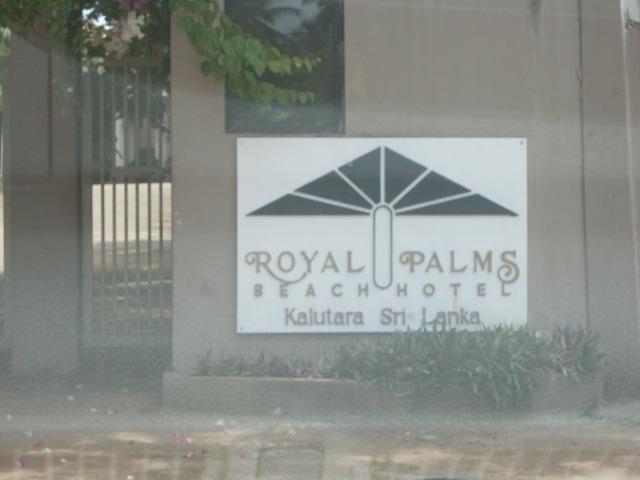 ROYAL PARMS 2