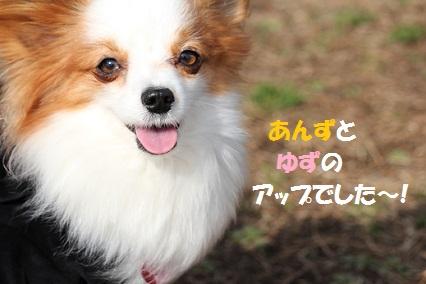 b2012032616.jpg