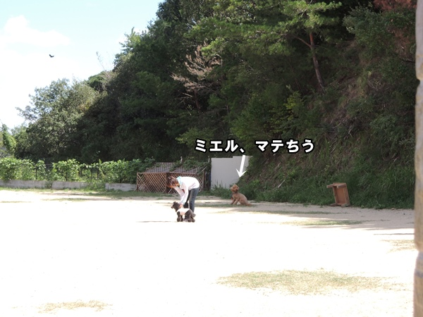 DSCN573120130926.jpg