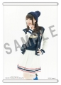 NANA MIZUKI LIVE FLIGHT×FLIGHT+ WonderGOO特典1「タペストリー」