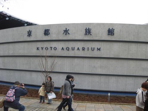 京都水族館 002