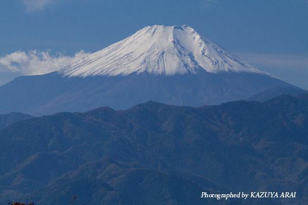 121110shiroyama-7015.jpg