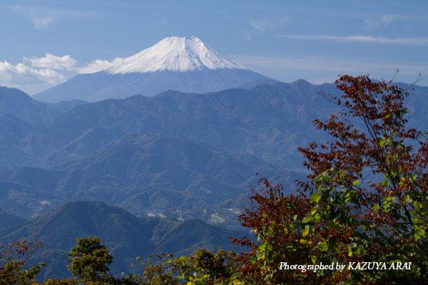 121110shiroyama-7033.jpg