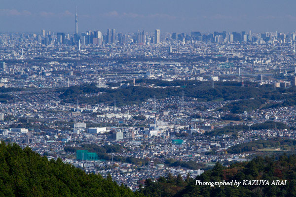 121110shiroyama-7045.jpg