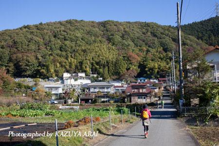 121110shiroyama-7944.jpg