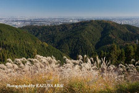 121110shiroyama-8170.jpg