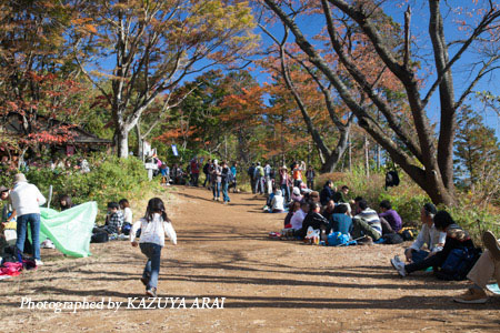 121110shiroyama-8216.jpg