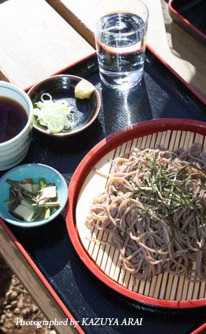 121110shiroyama-8245.jpg