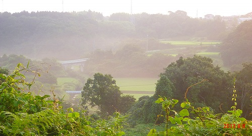s-朝の散歩