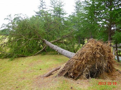 s-台風18号被害20131019