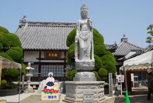 観音寺牡丹35