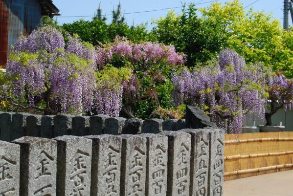 地福寺29