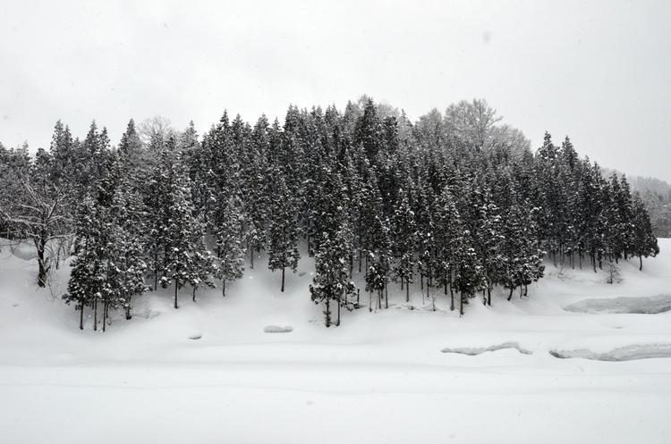 山里の雪-1