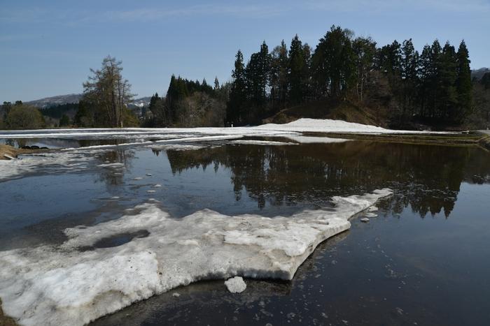 里山の残雪-3