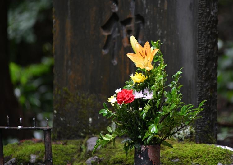 山奥の神社-2
