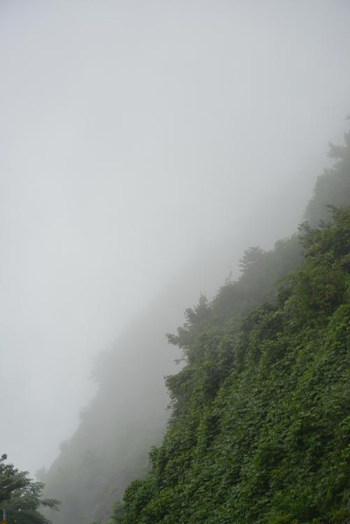 霧の中-1
