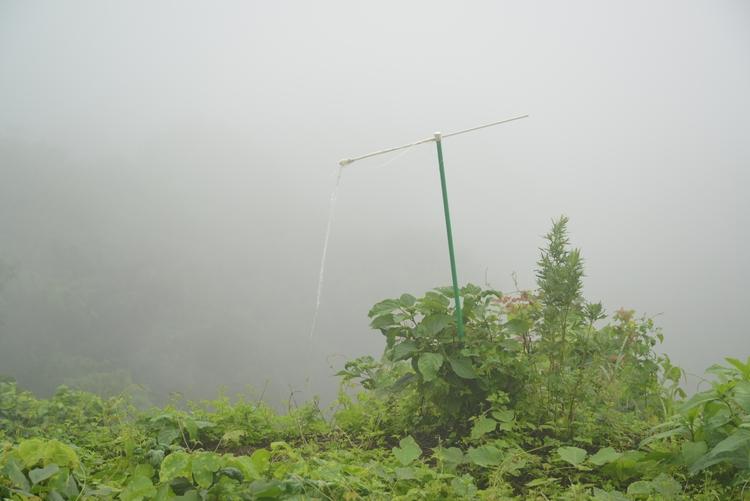 霧の中-4