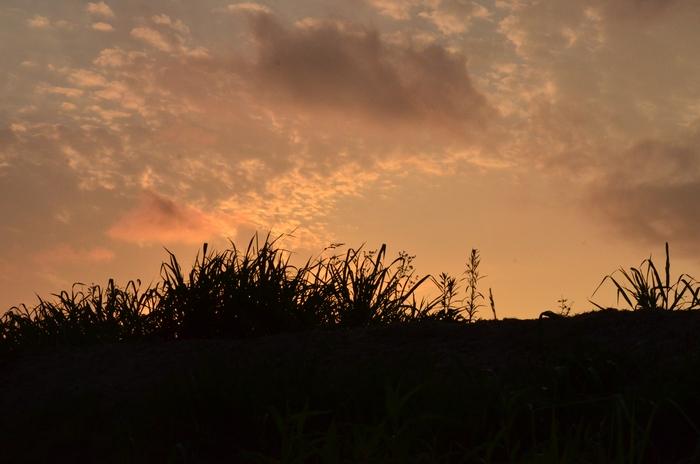 久しぶりの夕陽-4