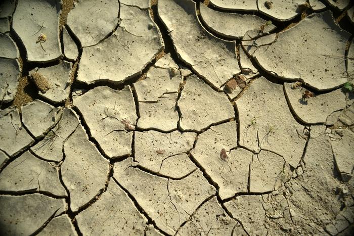 増水の跡-2
