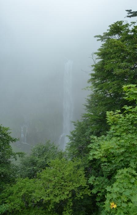 霧の華厳-2
