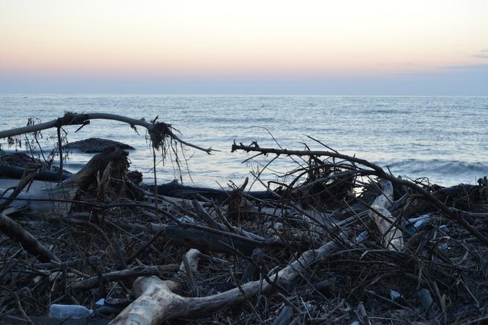 夕暮れ海岸 豪雨の跡-2