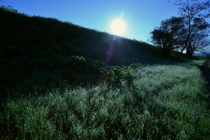 秋の朝-1