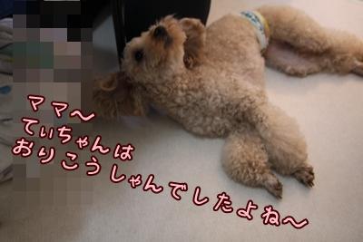 お家シャンプー ライム編