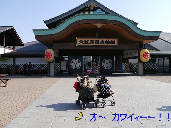 P1050227大江戸