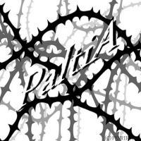 PaltiA