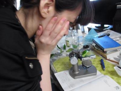 顕微鏡サキ