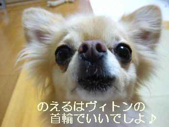 blog2011082002.jpg
