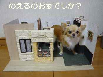 blog2011082201.jpg