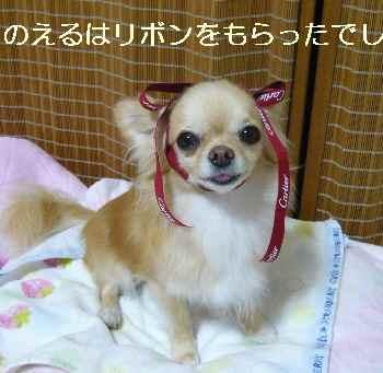 blog2011082609.jpg
