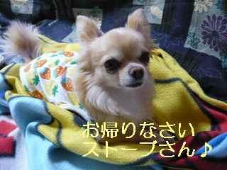 blog2013031101.jpg