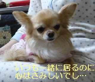 blog2013031402.jpg