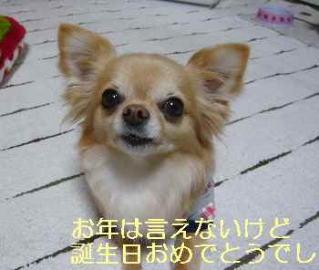 blog2013031705.jpg