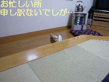 blog2013031801.jpg