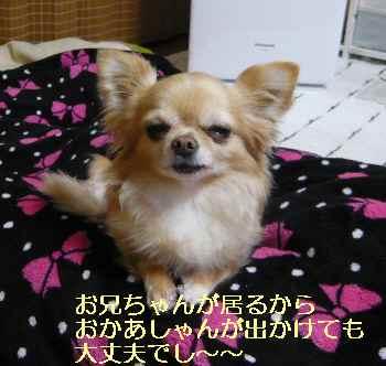 blog2013032002.jpg