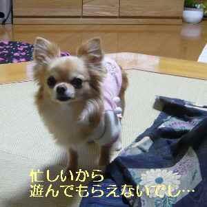blog2013032107.jpg
