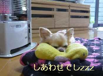blog2013032202.jpg