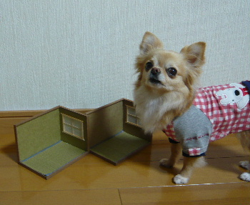 blog2013032403.jpg