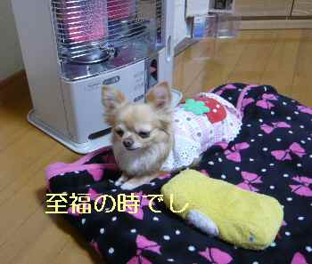 blog2013032601.jpg