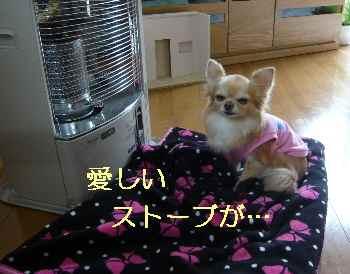 blog2013032801.jpg