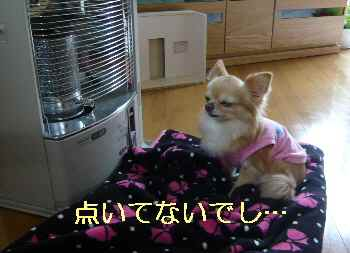 blog2013032802.jpg