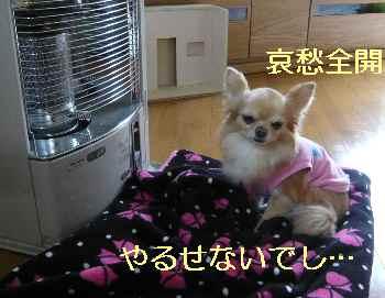 blog2013032803.jpg