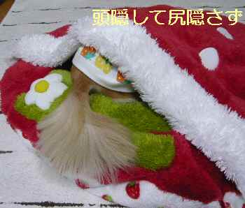 blog2013033001.jpg