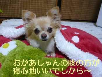 blog2013033002.jpg